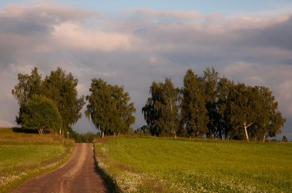 Vägen mot Höjerna