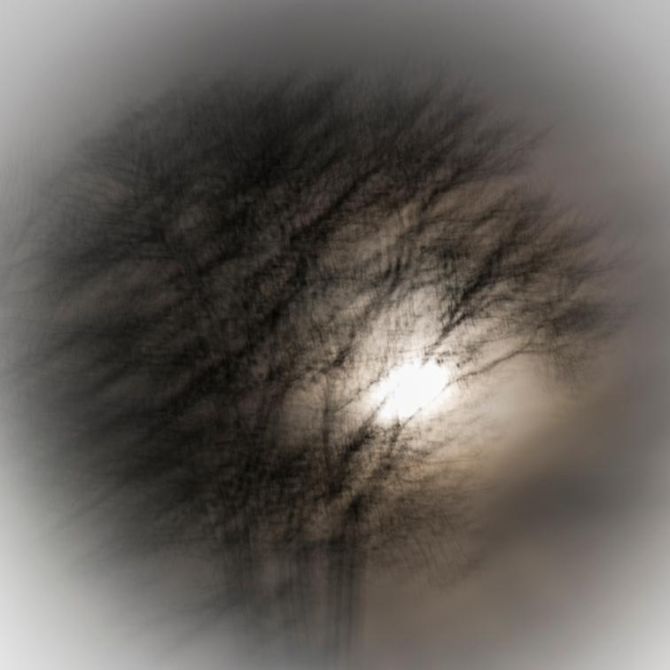 Moonlajt