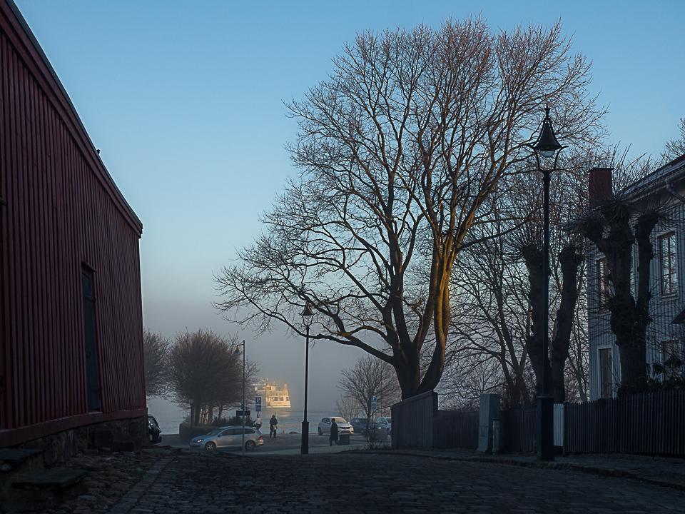 Foggy Days